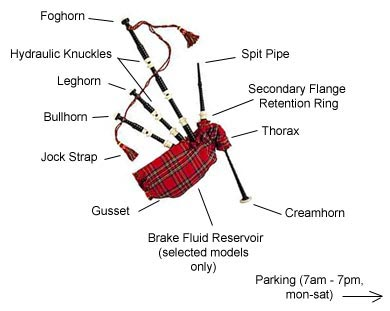 Bagpipes, Anatomy of